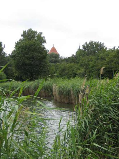 Thielenburger-See-1